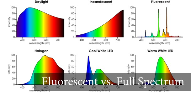 How Fluorescent Light KILLS Your Vision The Frauenfeld Clinic